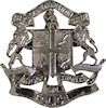 Photo of Fire Badge