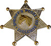 Sample Fire Badge