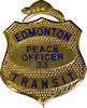 Example of Fire Badge
