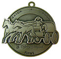 Photo of Marathon Participant medal