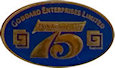 Photo of Promotional Lapel Pin